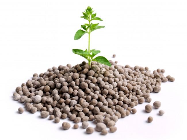 Удобрения для растений — минеральные, азотные, фосфорные.