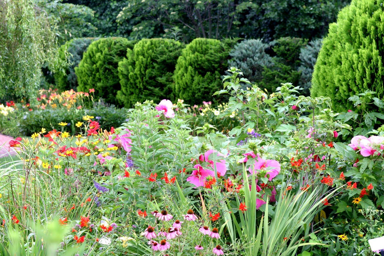 Тенелюбивые цветы для сада и названиями