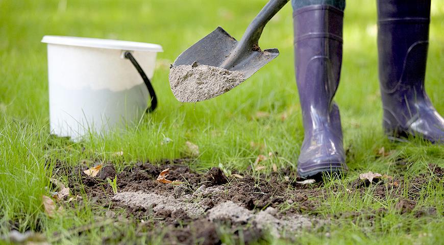 Зола как удобрение для растений