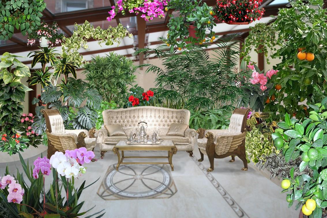 Зимний сад: вентиляция,отопление,остекление,микроклимат,фото,видео.