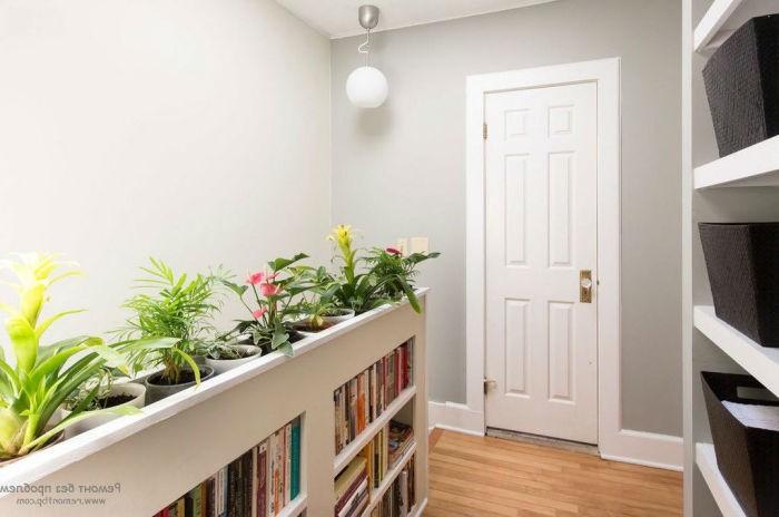 Комнатные растения в прихожей.