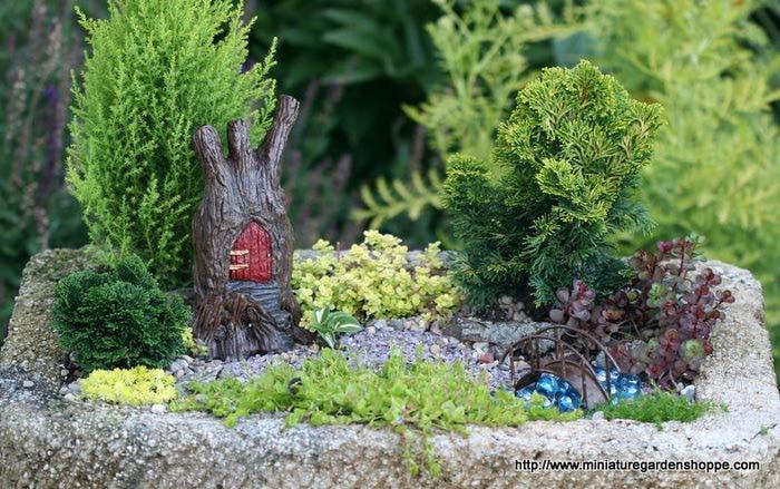 Миниатюрные ландшафтные композиции с живыми растениями для дома