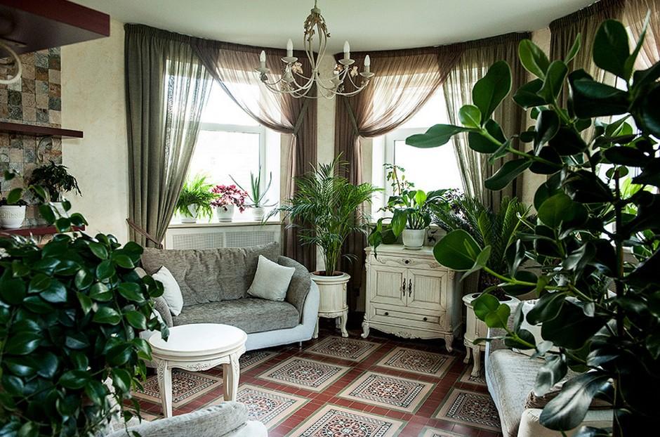 Чем полезны домашние растения.