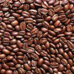 Главные пищевые компоненты растений